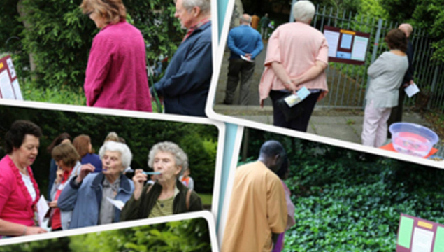 photo montage of church members participating in prayer activities in the church grounds