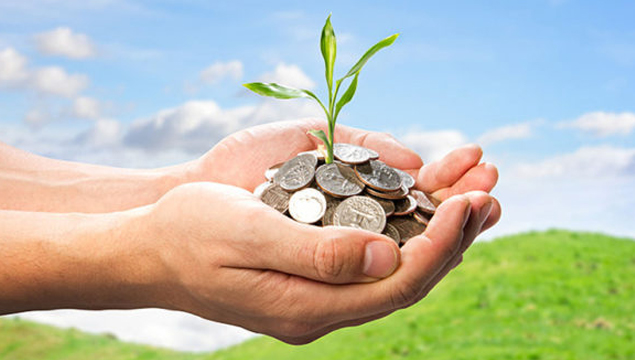 image of a new plant growing out of a pile coins held in open hands
